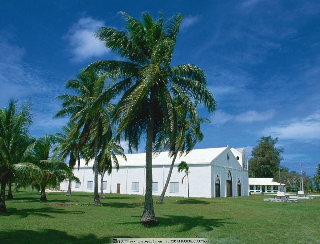 夏威夷 夏威夷岛 国外旅游 旅游摄影 自然风景 热带风情 椰树 别墅 白