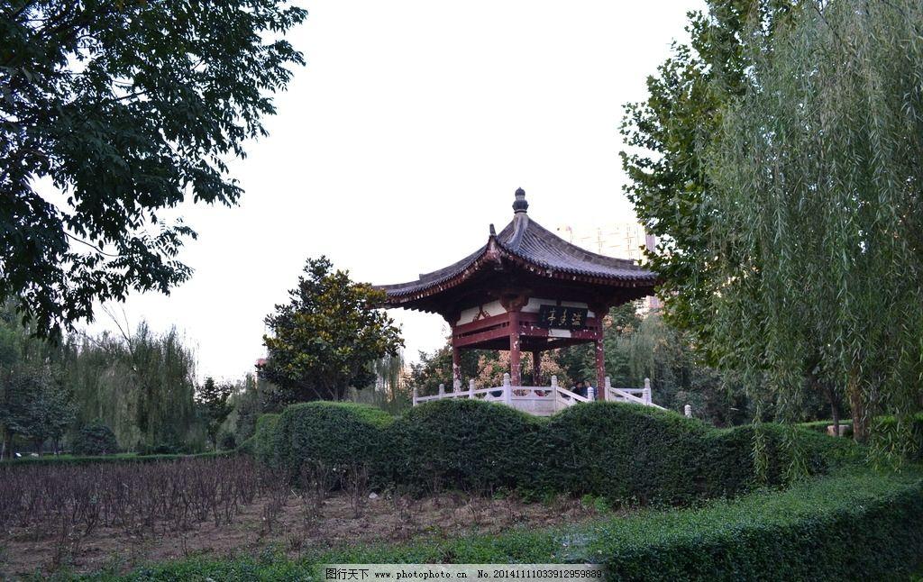 西安牡丹园 牡丹花公园 公园 城市公园 园林景观 绿植 西安公园 亭子