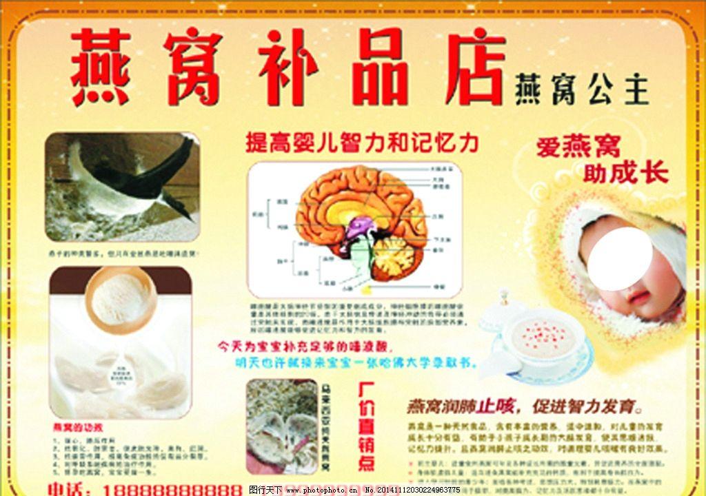 燕窝宣传单 脑部结构图 大脑分析图 燕窝补品海报 燕窝的功效 小孩