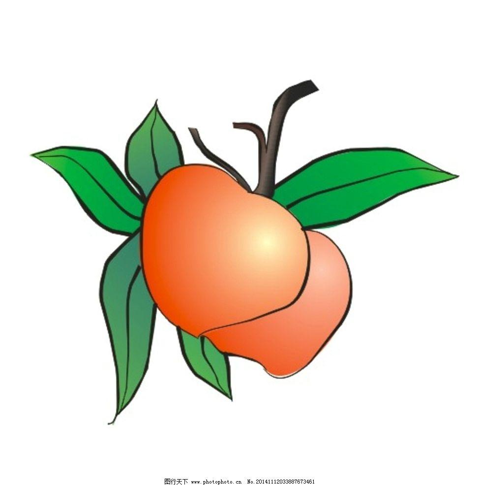 水蜜桃 水果 桃子 果实 矢量图  设计 其他 图片素材  cdr