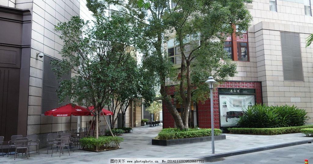 商业景观 香樟 路灯 种植池 临街商铺 外摆空间 摄影 建筑园林图片