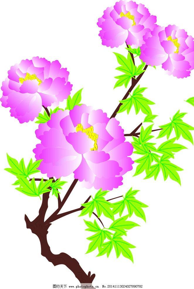 牡丹花 手绘 粉色 花瓣