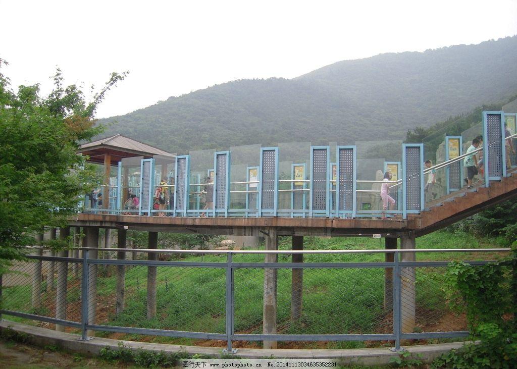 动物园 无锡动物园 无锡园林 无锡风景 无锡景区 无锡景观 动物园风景