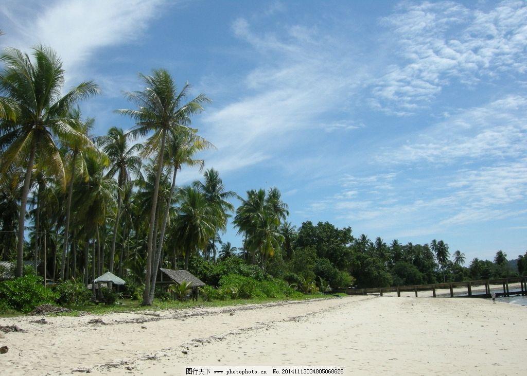 沙滩 海边 岛屿 热带 树林 海滩 摄影 自然景观 自然风景 300dpi jpg
