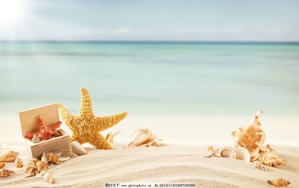 清爽沙滩 海边风景 清爽风景 大海 海星 沙砾 沙子 细沙 贝壳
