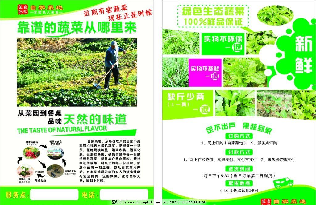 环保蔬菜配送宣传单图片_展板模板_广告设计_图行天下