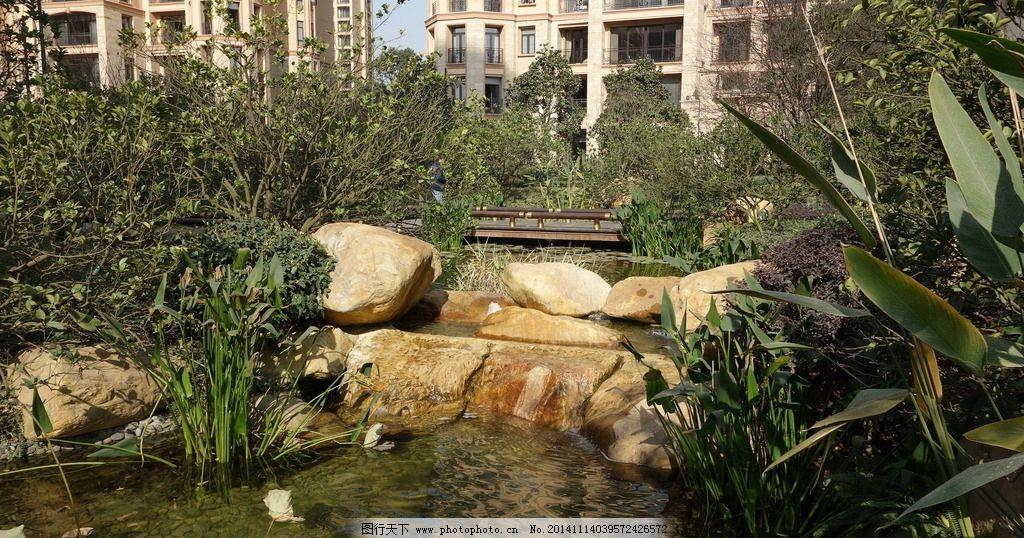 自然水景设计 湿地 景观置石 水生植物 跌水 摄影 建筑园林 园林建筑
