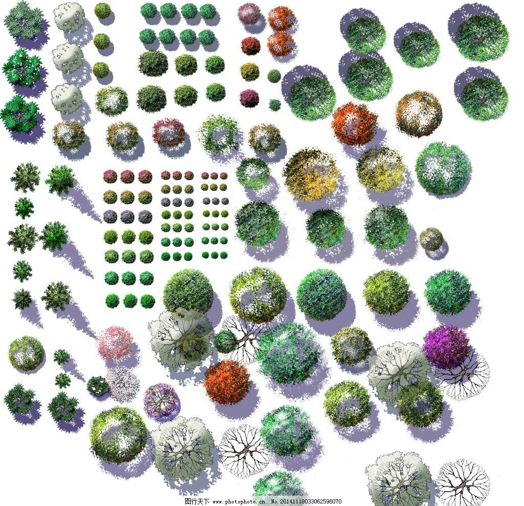 园林景观设计平面树素图片