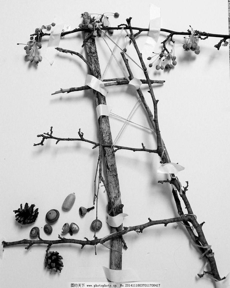 树枝 素材 高清 松果 构成 摄影 生活百科 生活素材 72dpi jpg