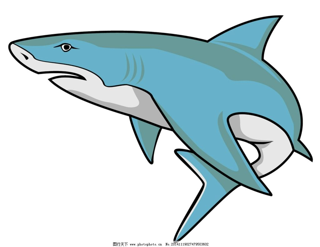 鲨鱼 海洋生物 卡通鲨鱼