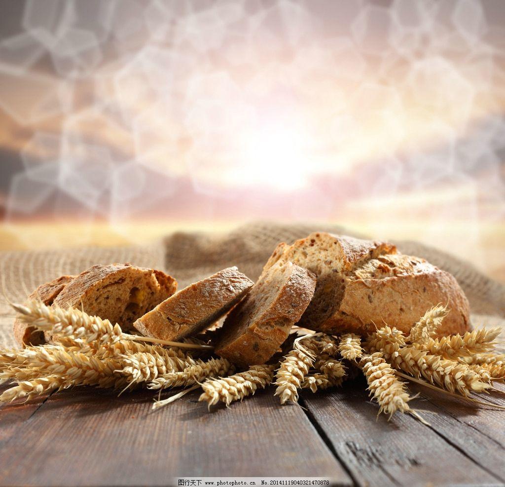 工艺面包动物款