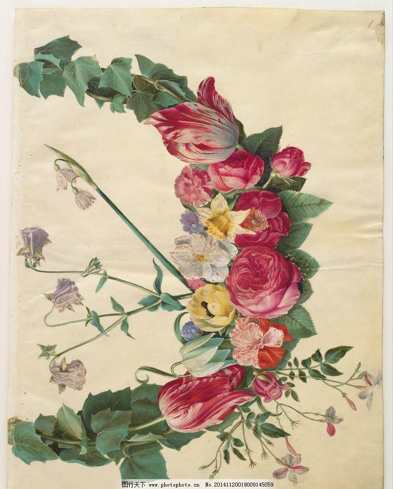 花类图鉴 植物 花 田园 装饰画 墙画 手绘 未分层