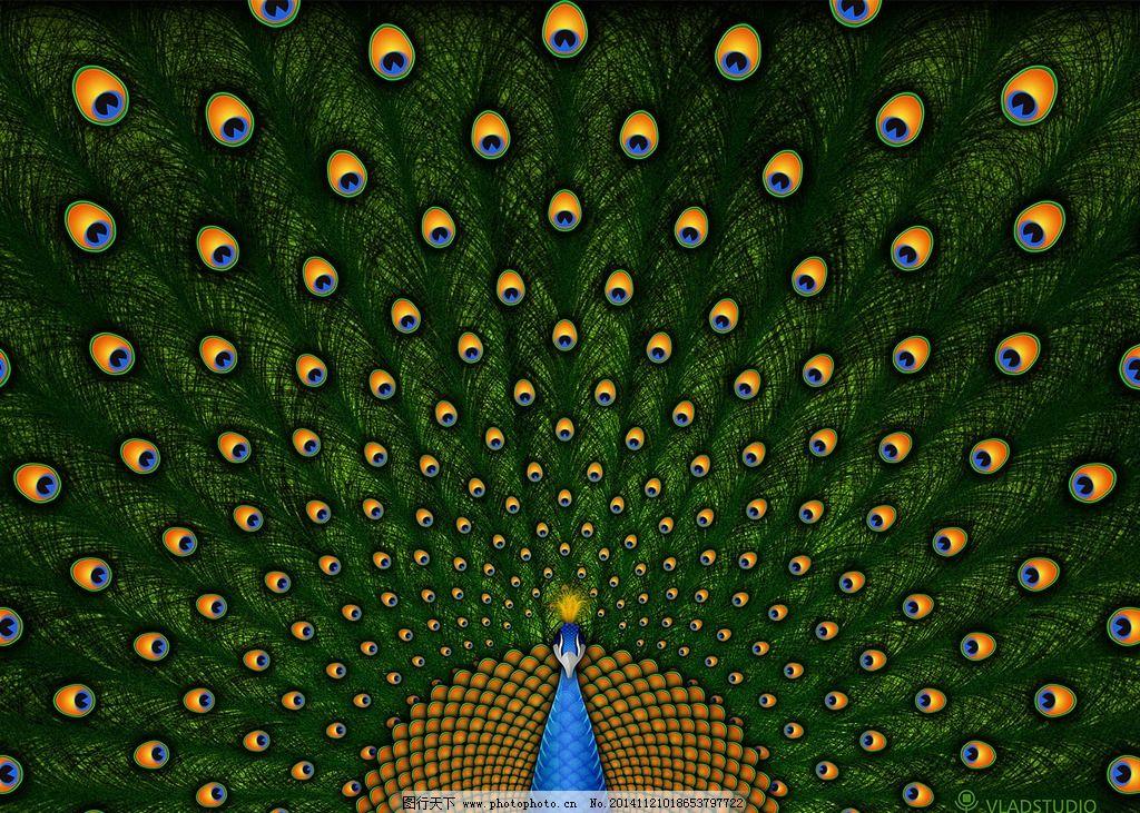 孔雀开屏 孔雀 漂亮的孔雀 好看的孔雀 美丽的孔雀 动物 设计 动漫