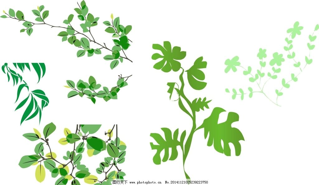 树藤花边-春天树叶图片矢量