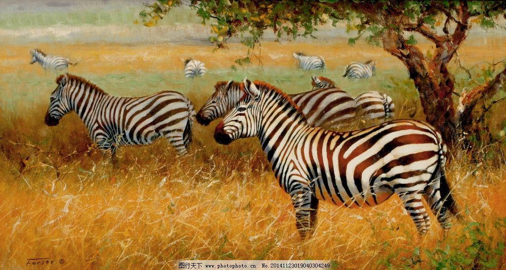 斑马 动物 风景 装饰画