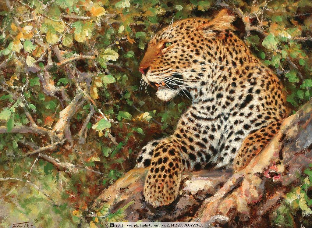 豹 豹子 壁纸 动物 桌面 1024_748