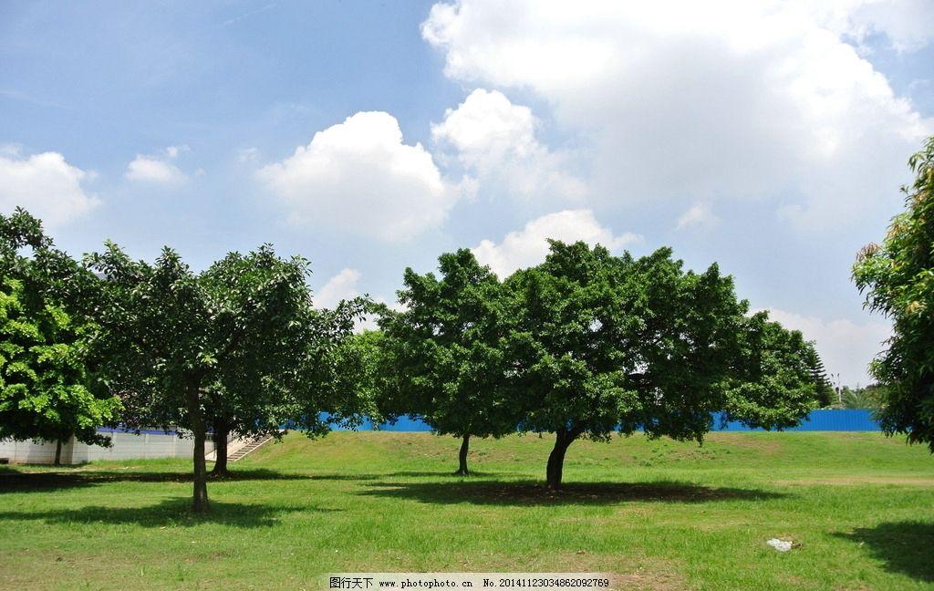 风景 蓝天绿地 树木 美景 绿树 风景,云,山水 摄影 自然景观 自然风景