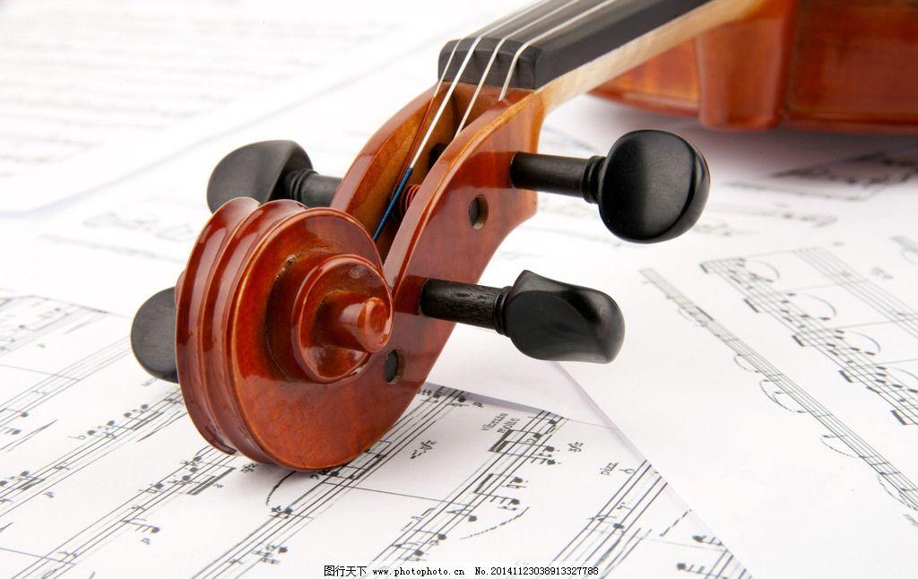 唯美小提琴图片