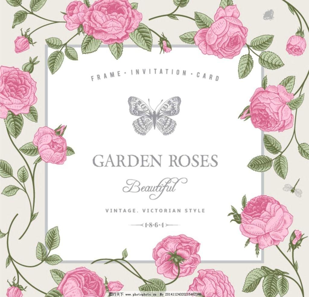 玫瑰花朵素材图片