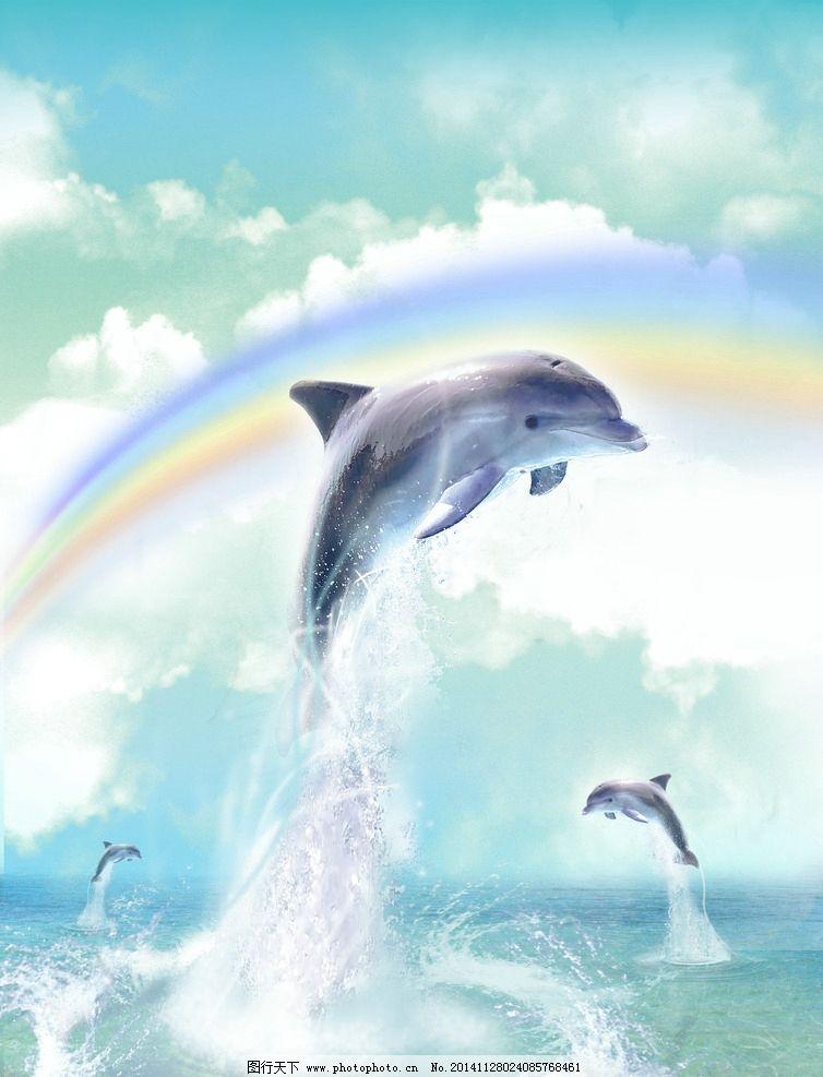 海豚 大海 野生海豚 海豚飞跃 海豚跳跃 蓝天 物世界 jpg 动物 摄影