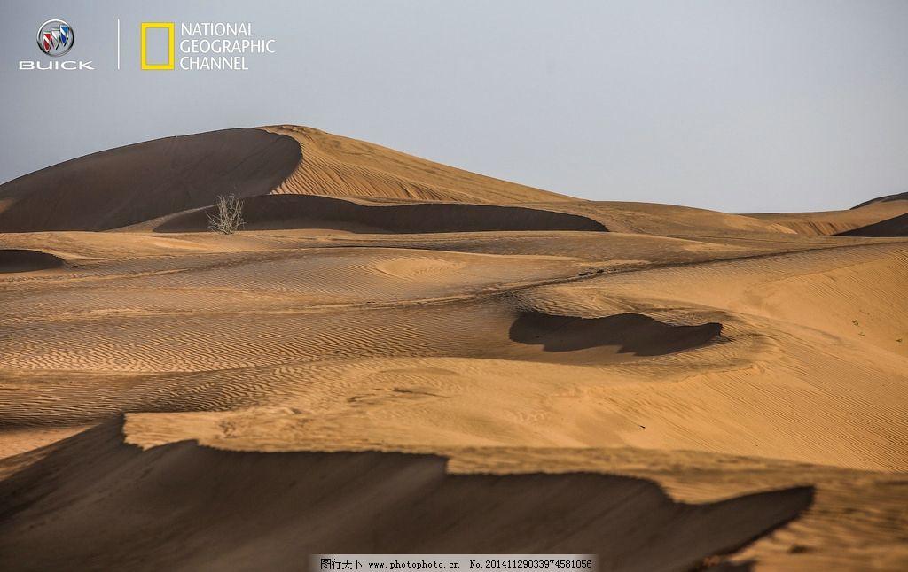 骆驼 沙漠 黄昏沙漠 沙漠景色