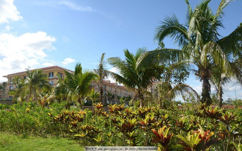 雨林洋房 小区楼房 城市小区 蓝天白云 椰子树 园林建筑 摄影