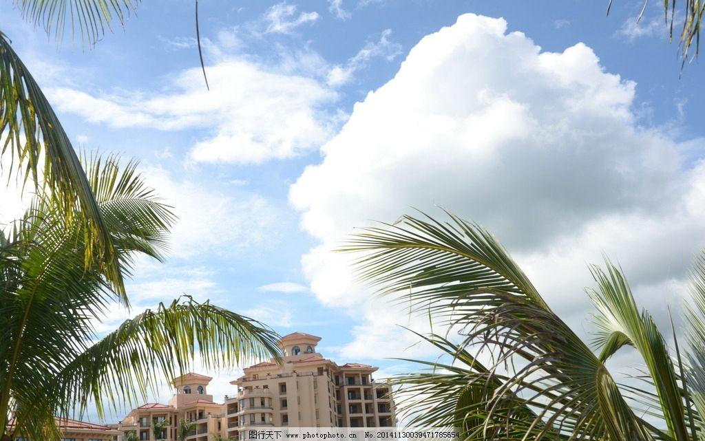 小区楼房 城市小区 蓝天白云 楼房 小区 洋房 椰子树 园林建筑 建筑摄