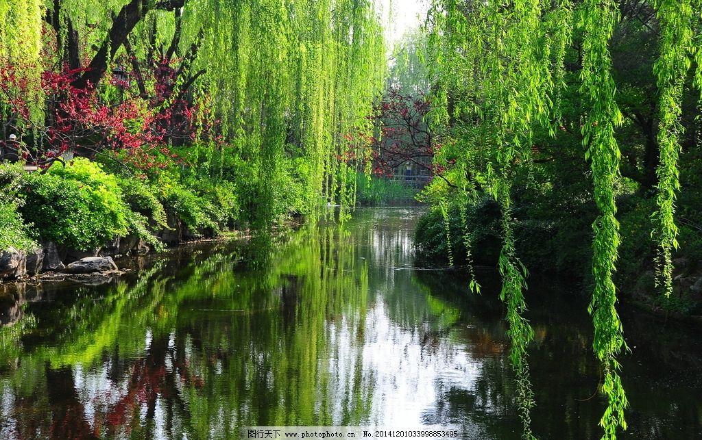 趵突泉风景 自然风景 风景名胜 风景壁纸 山东风景 国内旅游 天下第一