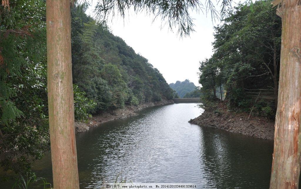 摄影图库 自然景观 山水风景  阳光 空气 绿色 森林 大树 树木 河流