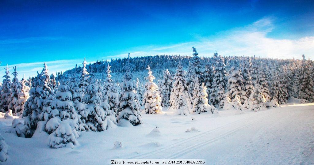 雪景图片,冰雪 森林 兴安岭 冰天雪地 冰雪森林 冬天