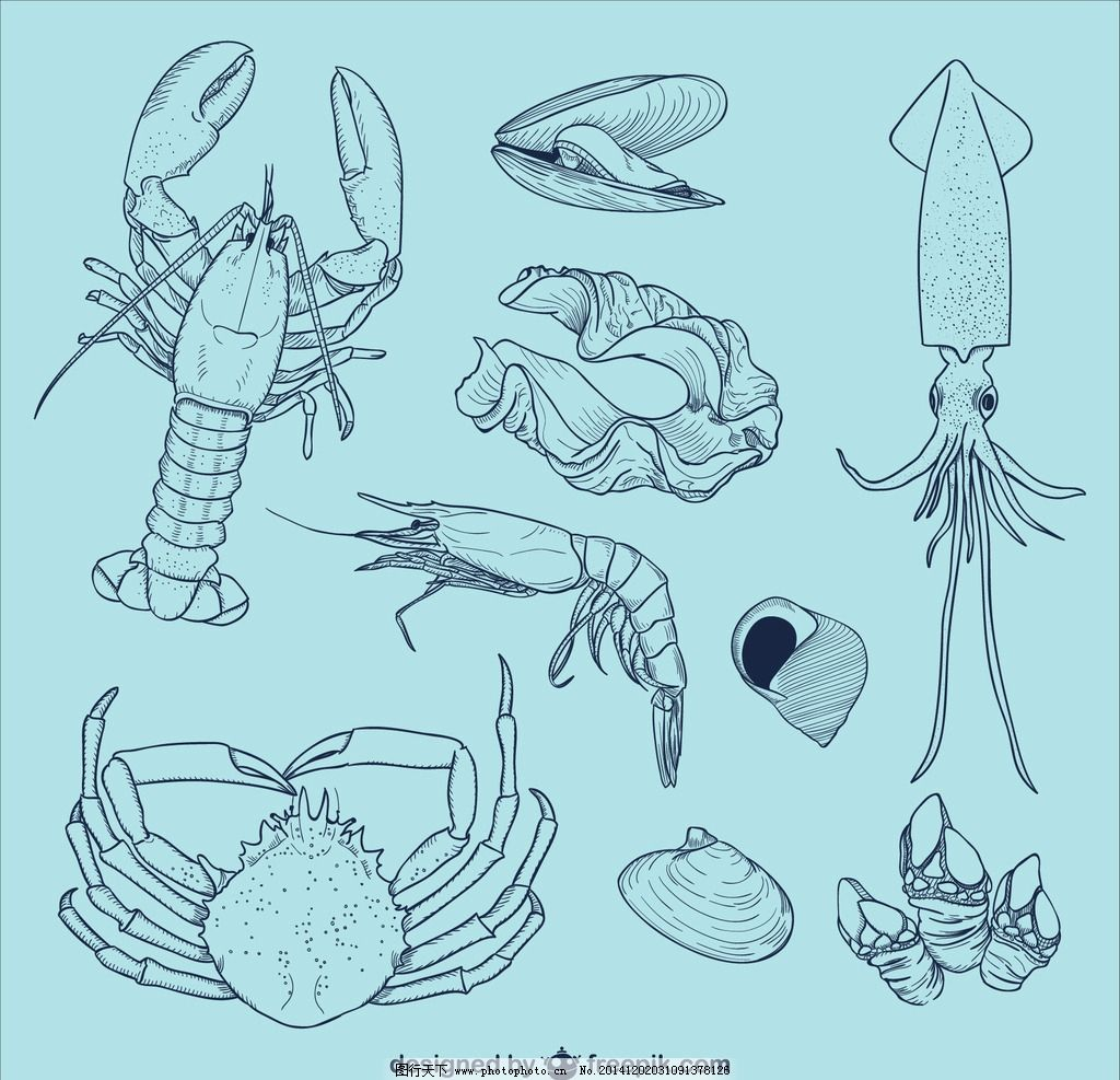 手绘动物 螃蟹 虾子 水里 水里动物 贝壳