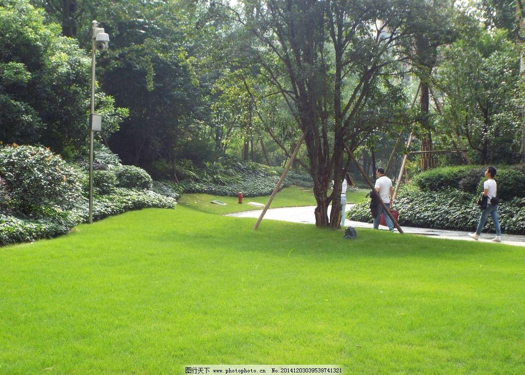 高端小区 欧式 高端 小区景观 公园 草坪 景观 小区景色 房地产 高档