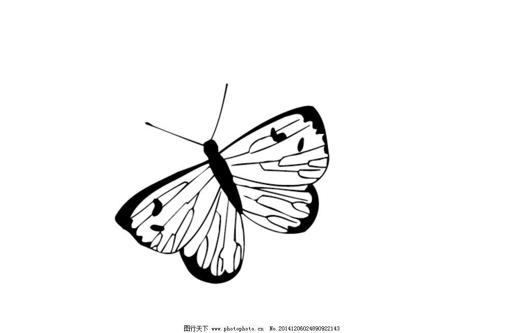 欧式蝴蝶简笔画