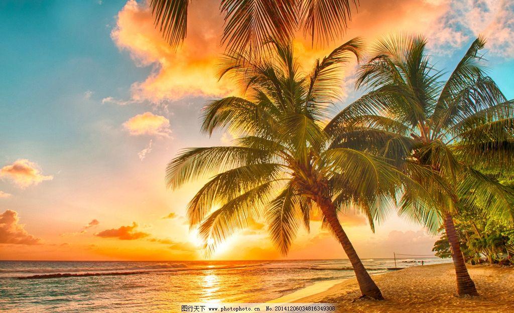 黄昏落日沙滩椰子树图片