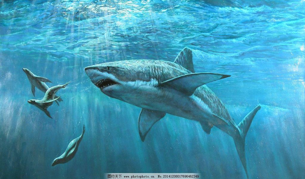 鲨鱼 海底 大白鲨 海洋 海底世界 设计 生物世界 海洋生物 1480dpi