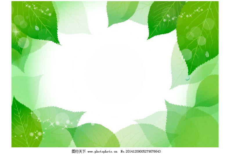 露珠 绿色 树叶 小清新 叶子 绿色 小清新 背景 露珠 露水 露 树叶