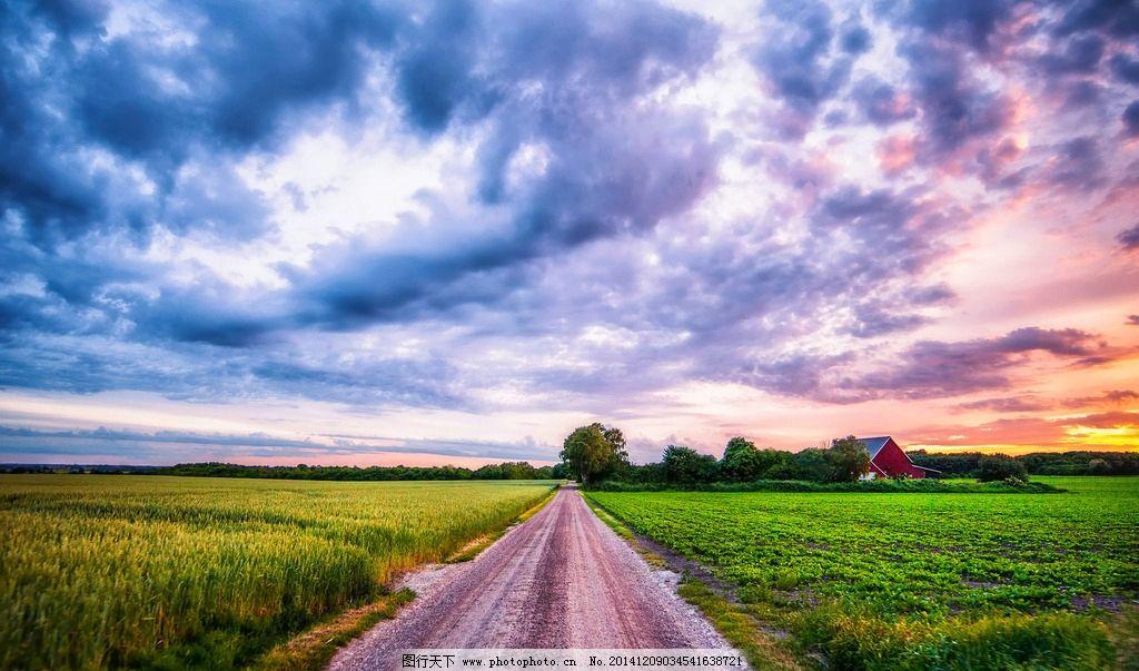 蓝天 白云 田园 绿野 田间小路 田园景观 田园风景      摄影 自然