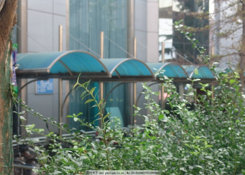 阳光板雨棚 车棚 不锈钢 自行车棚 自行车雨棚 工厂自行车棚 单车棚