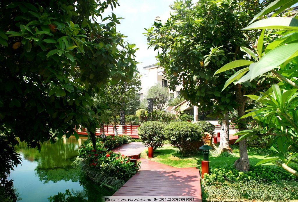 东南亚园林 水景 绿化 休闲 别墅 风景摄影 摄影 建筑园林 园林建筑