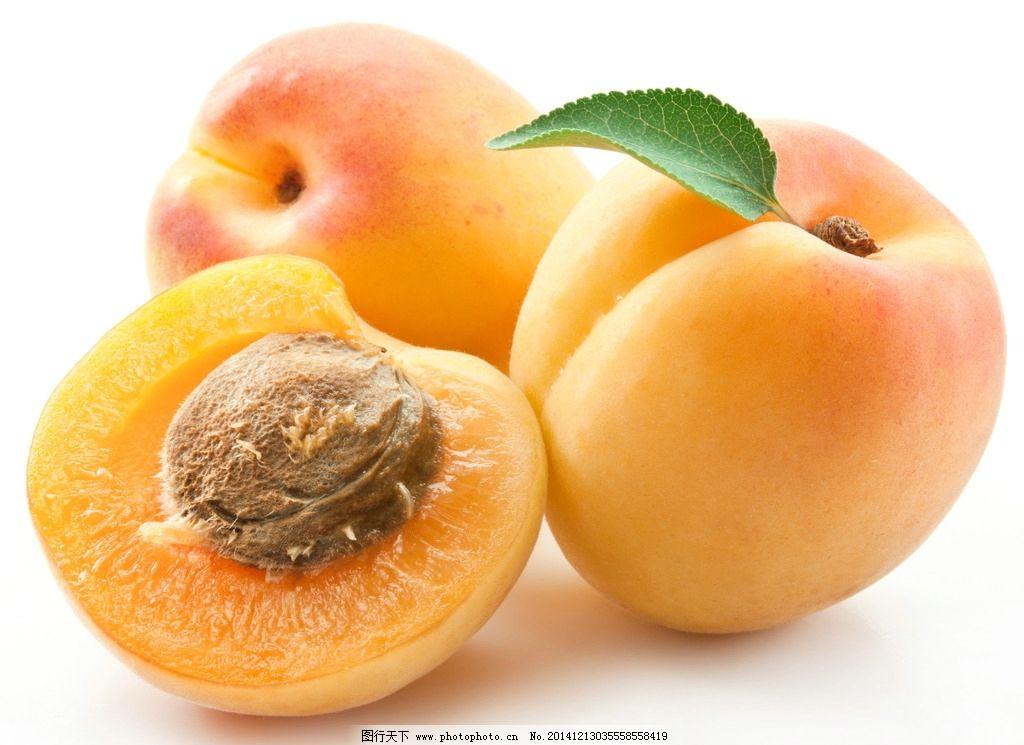 黄杏 杏子 水果杏 杏肉 梅子 杏核 水杏 杏 水果 水果 摄影 生物世界