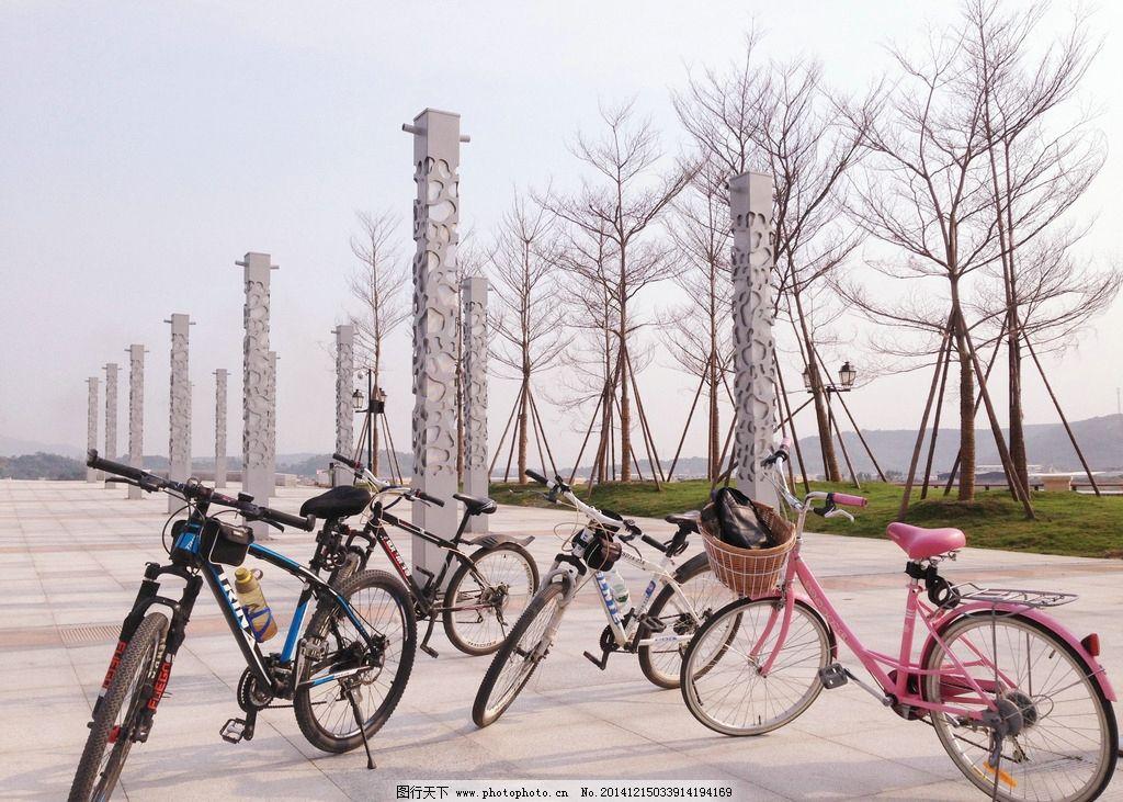 自行车 山地自行车 女式自行车