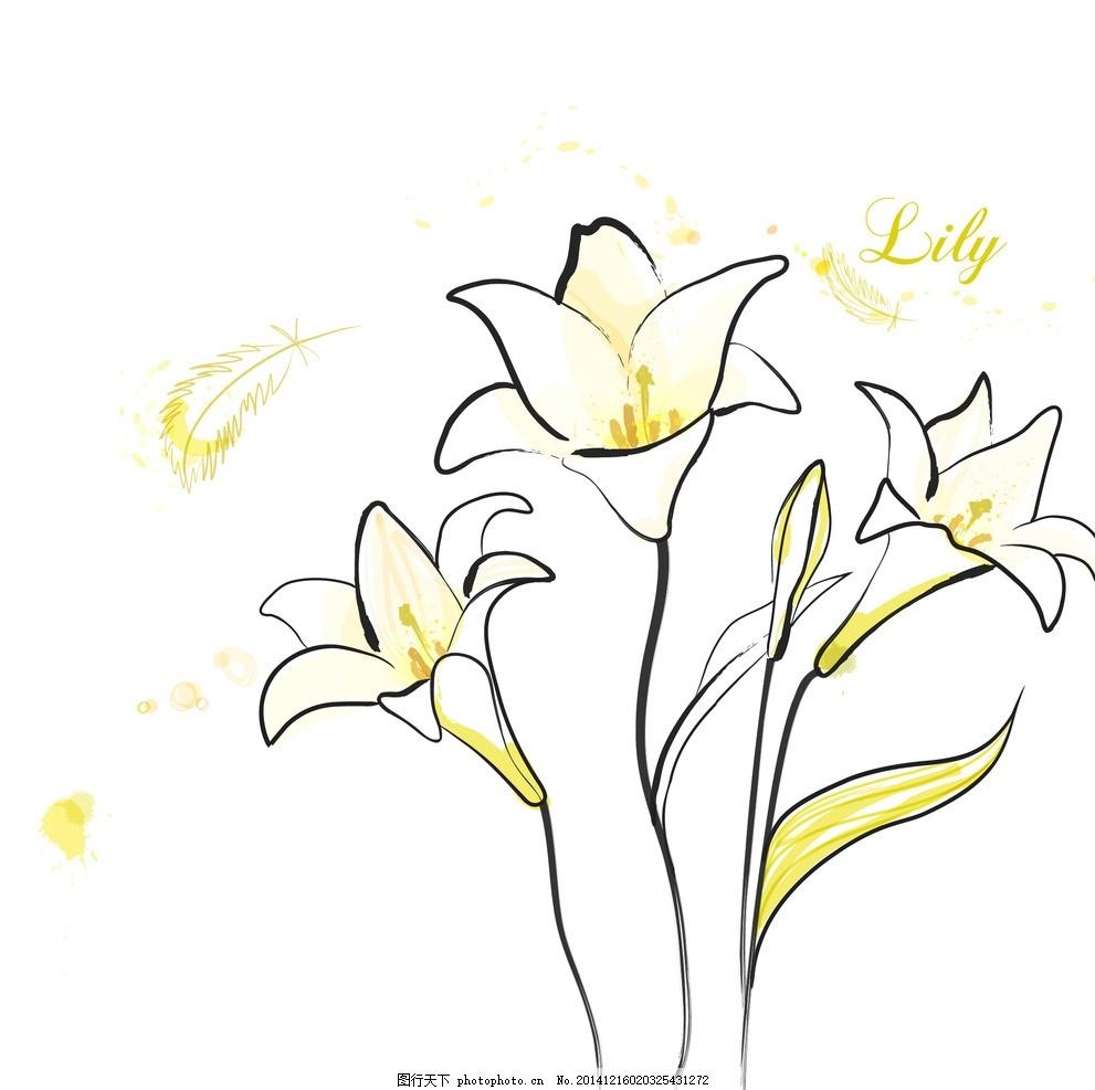 手绘矢量百合花线条花朵