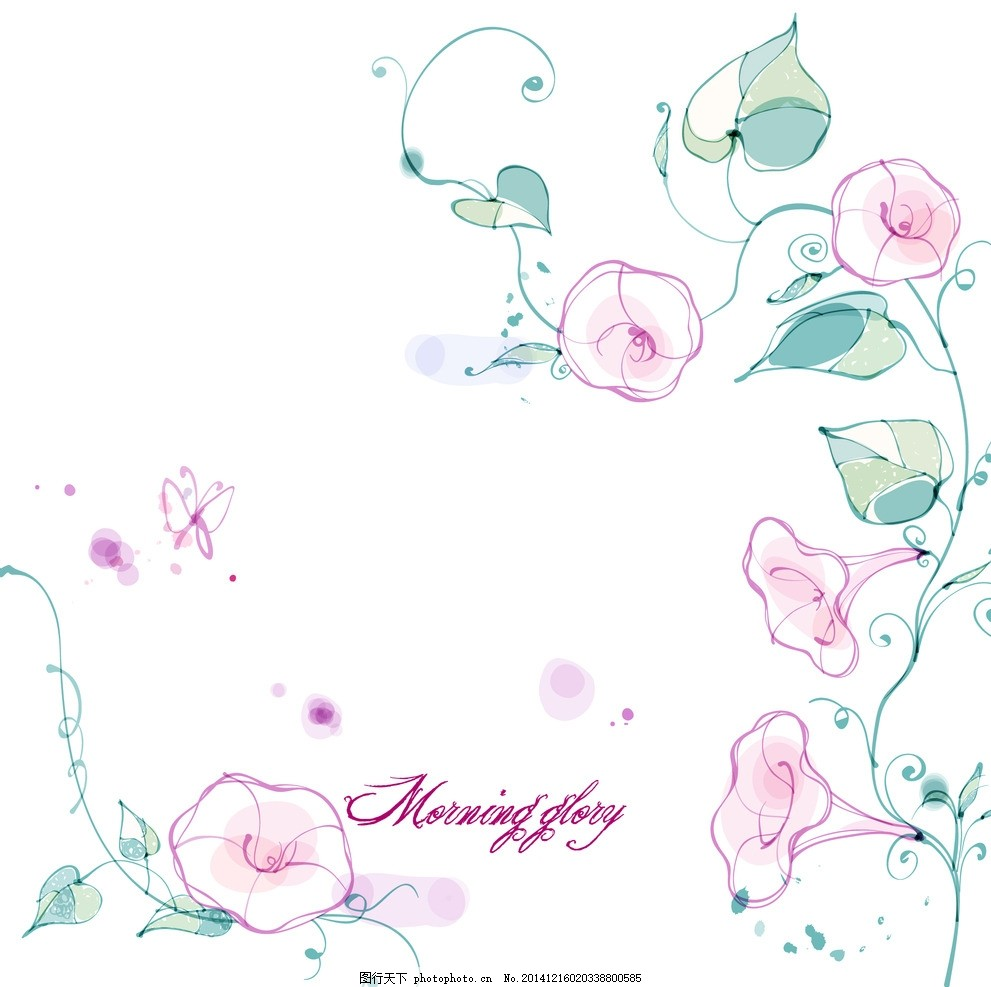手绘矢量牵牛花线条花朵