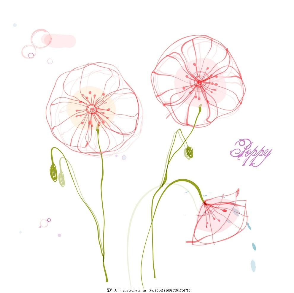 手绘矢量罂粟花线条花朵