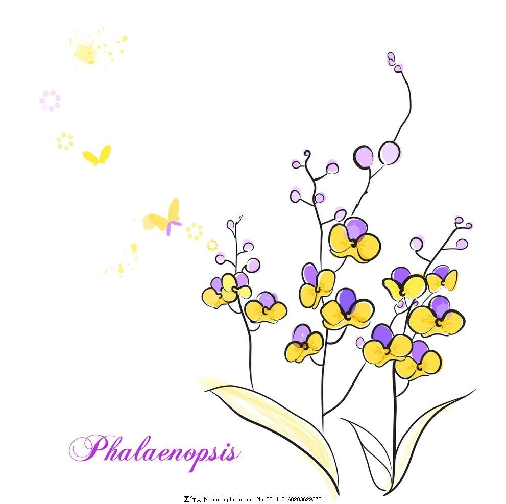 手绘蝴蝶兰 矢量蝴蝶兰 蝴蝶兰线条花 卡通蝴蝶 手绘花朵 线条花朵 时