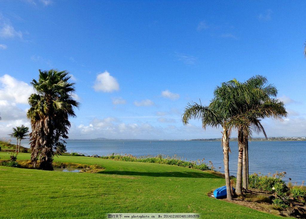 新西兰海滨自然风光 蓝天 白云 大海 海水 绿树 绿地 草地 棕榈树