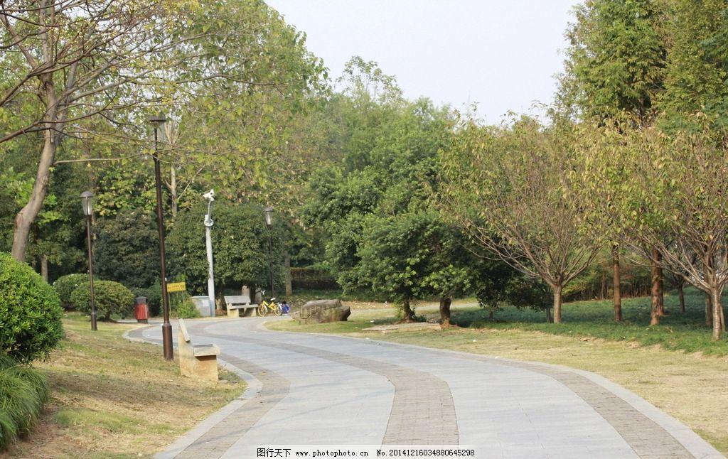 公园 树 公园树林 草地 秋天的草地 秋意盎然 花草 公园小路 摄影