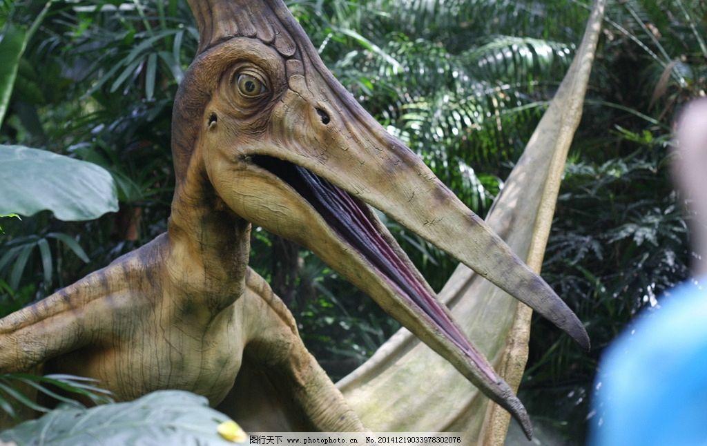 恐龙 侏罗纪公园 长隆动物园 森林 翼龙 摄影 旅游摄影 国内旅游 72