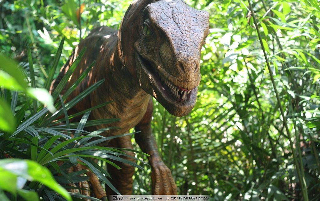 恐龙 长隆动物园 森林 侏罗纪 摄影 建筑园林