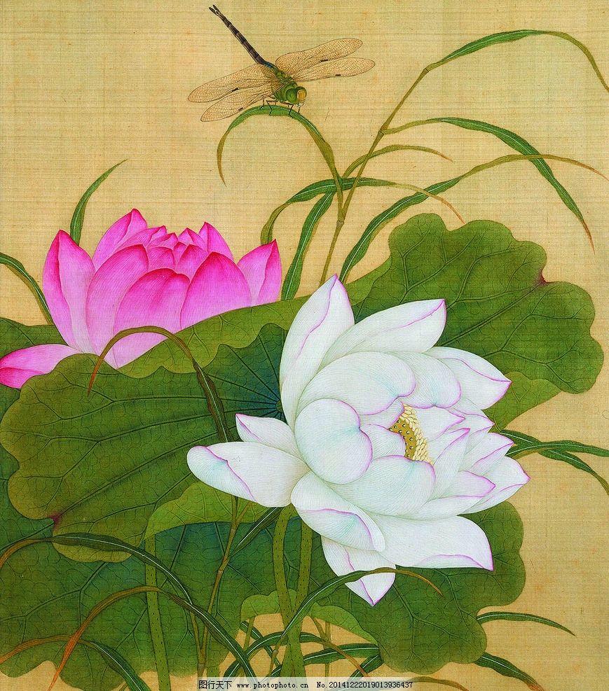 美术 中国画 工笔画 荷花 蜻蜓 国画荷花 设计 文化艺术 绘画书法 300